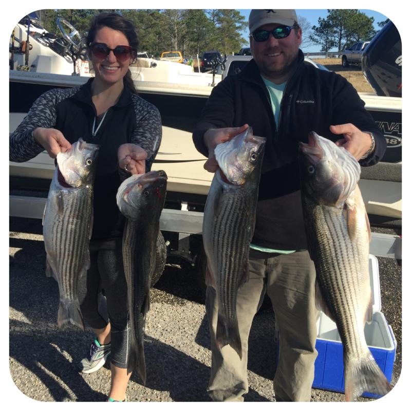 Lake Martin Striped Bass Caught By Got You Hooked Guide Service