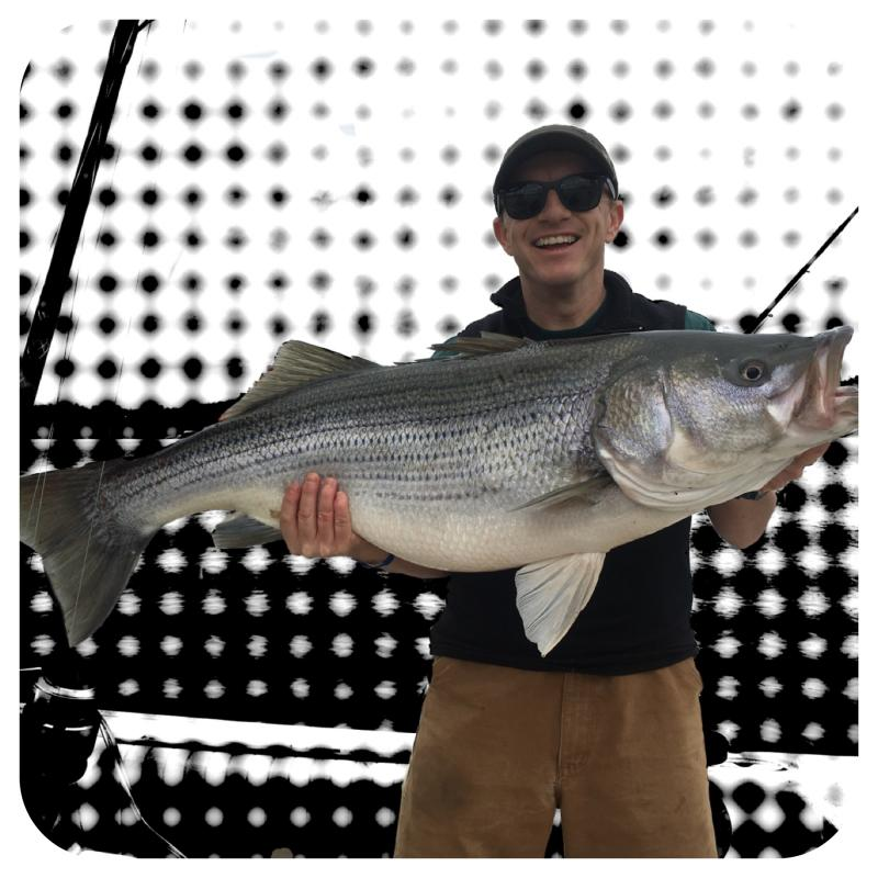 Smith Lake Striped Bass Caught By Mike Walker Of Fishing 24-7 Guide Service