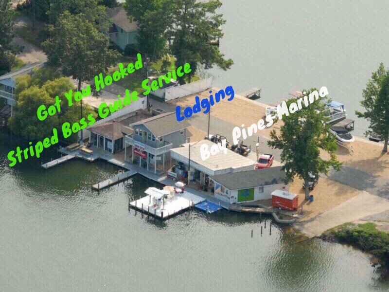 Lodging - Lake Martin, Alabama