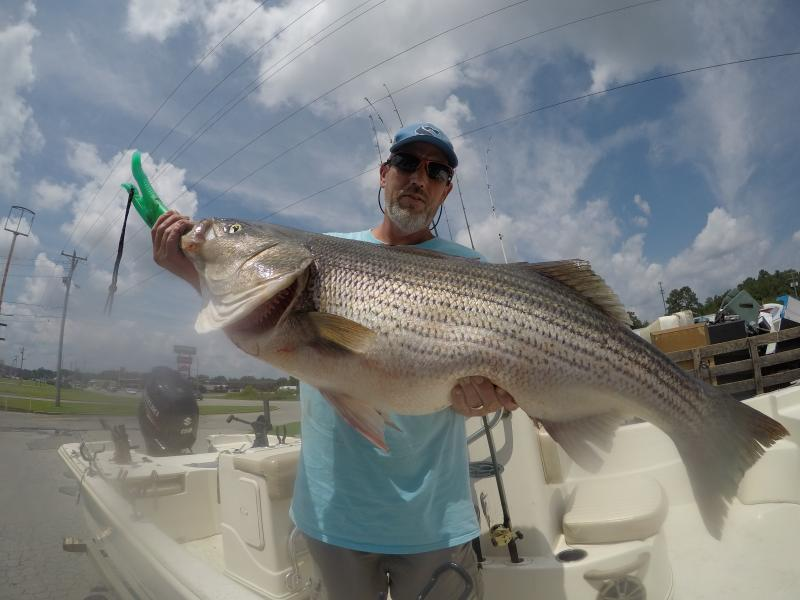 Got You Hooked Striped Bass Guide - Brian Farley's Services & Rates
